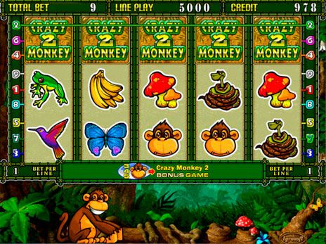 crazy monkey 2 jocuri ca la aparate gratis